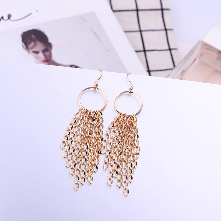 Korean version of the trendy creative ring tassel earrings NHNPS5352
