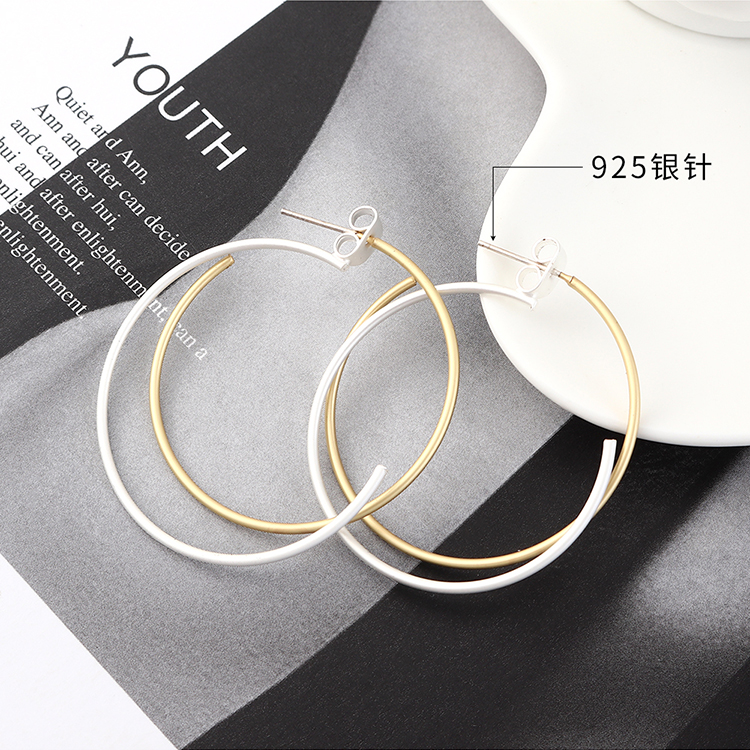 S925 Silver Needle Earring Fashion NHPS383323